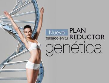 ofertas reductor genetico PROMOS