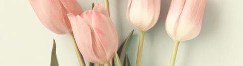 Día de la Madre, si crees que se lo merece todo…  ¡sorpréndela con un regalo diferente!