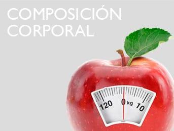subhome nutricion composicion corporal Nutrición