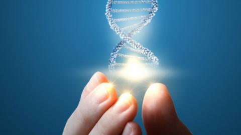 Test Dermatology, ¿Es la genética la clave para poder ofrecer a la piel el cuidado que necesita?